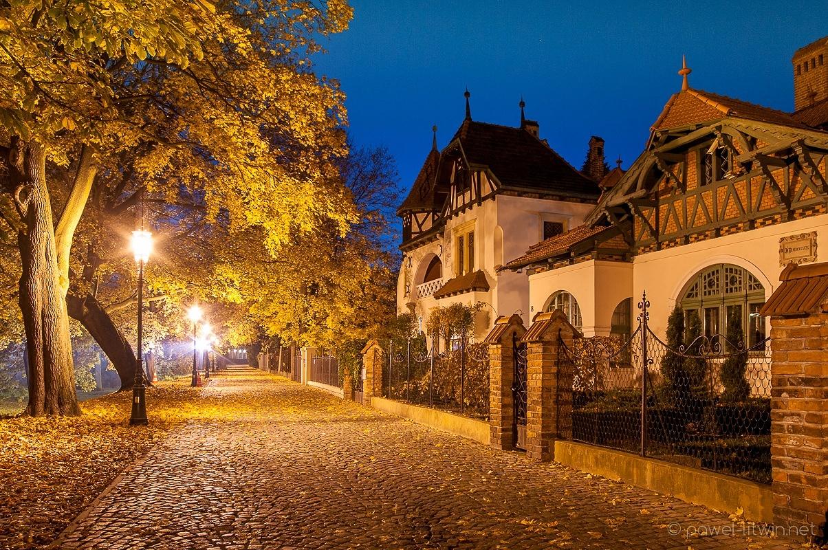 Aleja pod Kasztanami w Rzeszowie