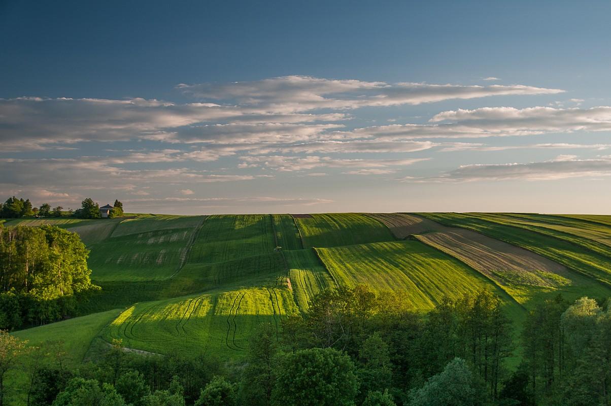 Krajobraz świętokrzyski o zachodzie słońca, fotograf Paweł Litwin