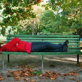 Julin park jesienią, fotograf Paweł Litwin