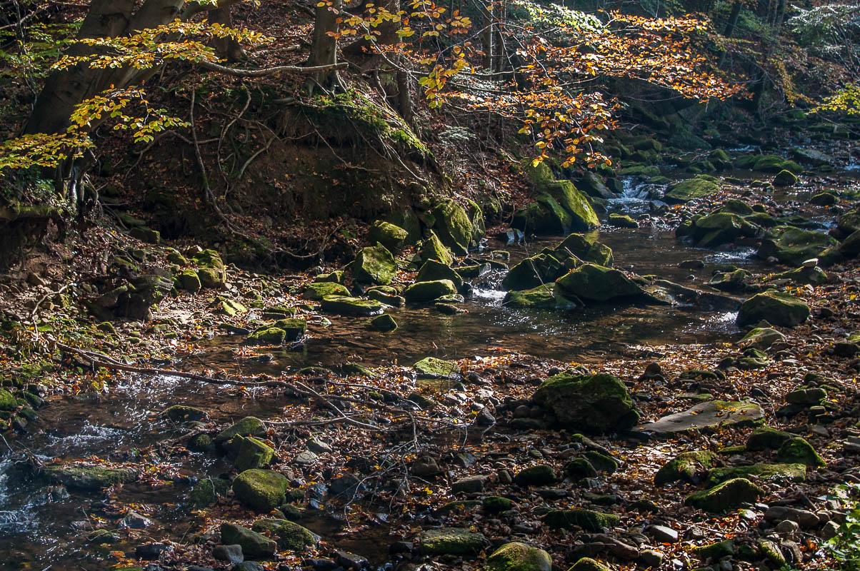 Folusz - rzeka Klopotnica. Beskid Niski, fotograf Paweł Litwin