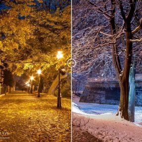 Aleja Pod Kasztanami, Rzeszów, Jesień-zima